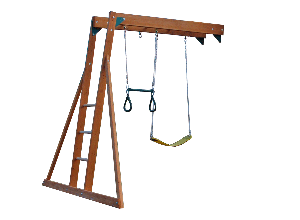 Monkey Bar with Trapeze Swing & Belt Swing